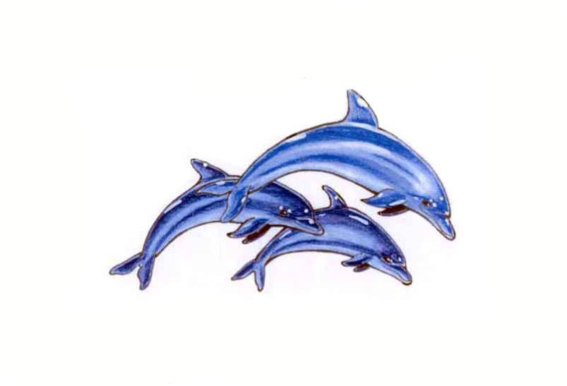 3 dolphin tattoo designs