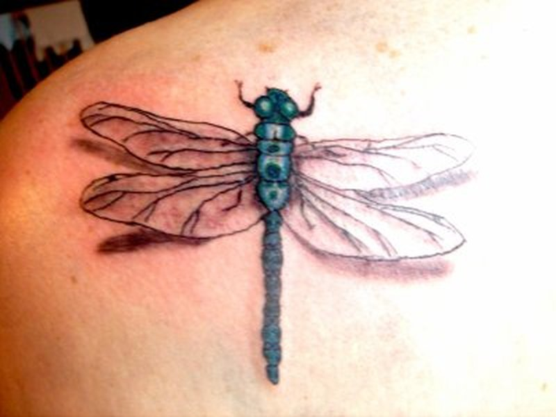 3d dragonfly tattoo on left shoulder back tattoos book tattoos designs. Black Bedroom Furniture Sets. Home Design Ideas