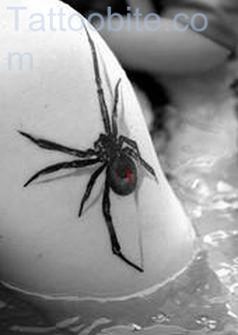 Black Spider Tattoo
