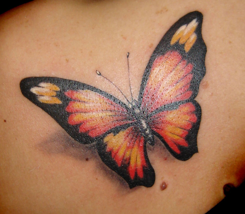 Butterfly Tattoos Images Pictures