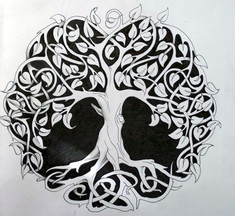 Celtic Tree Of Life Tattoo Designs
