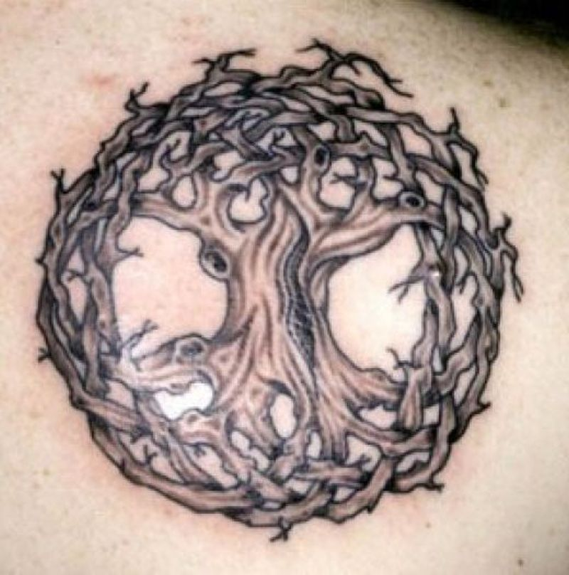 Celtic Tree Of Life Tattoo Meaning