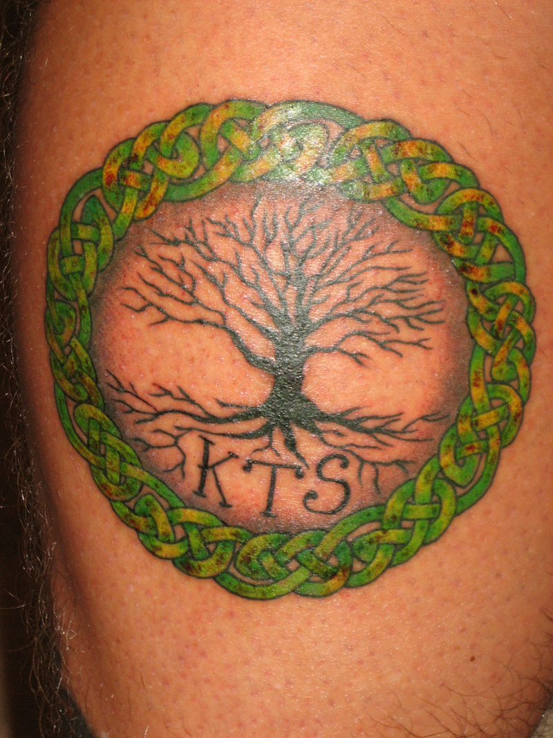 celtic tree of life tattoo pictures tattoos book tattoos designs. Black Bedroom Furniture Sets. Home Design Ideas