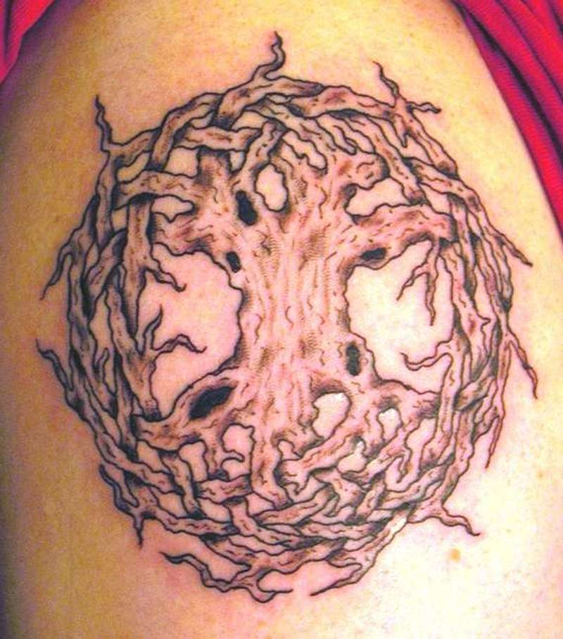 Celtic Tree Tattoos Meaning