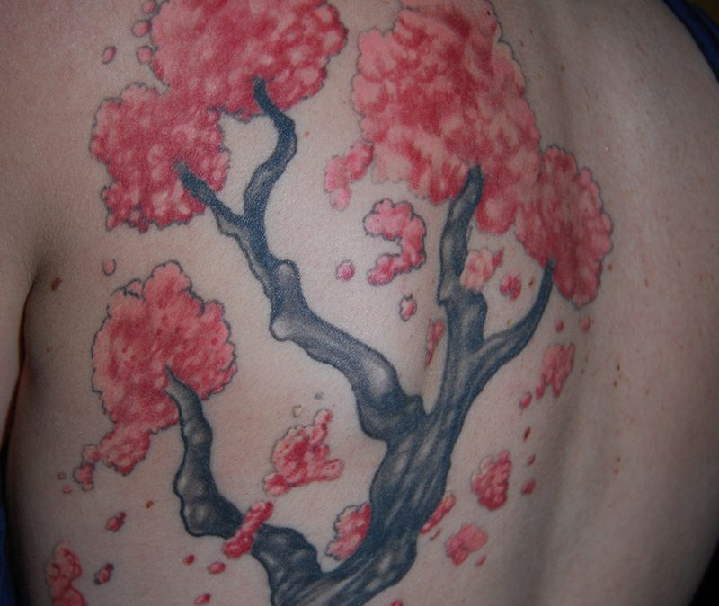 Cherry Blossom Tree Tattoos Designs