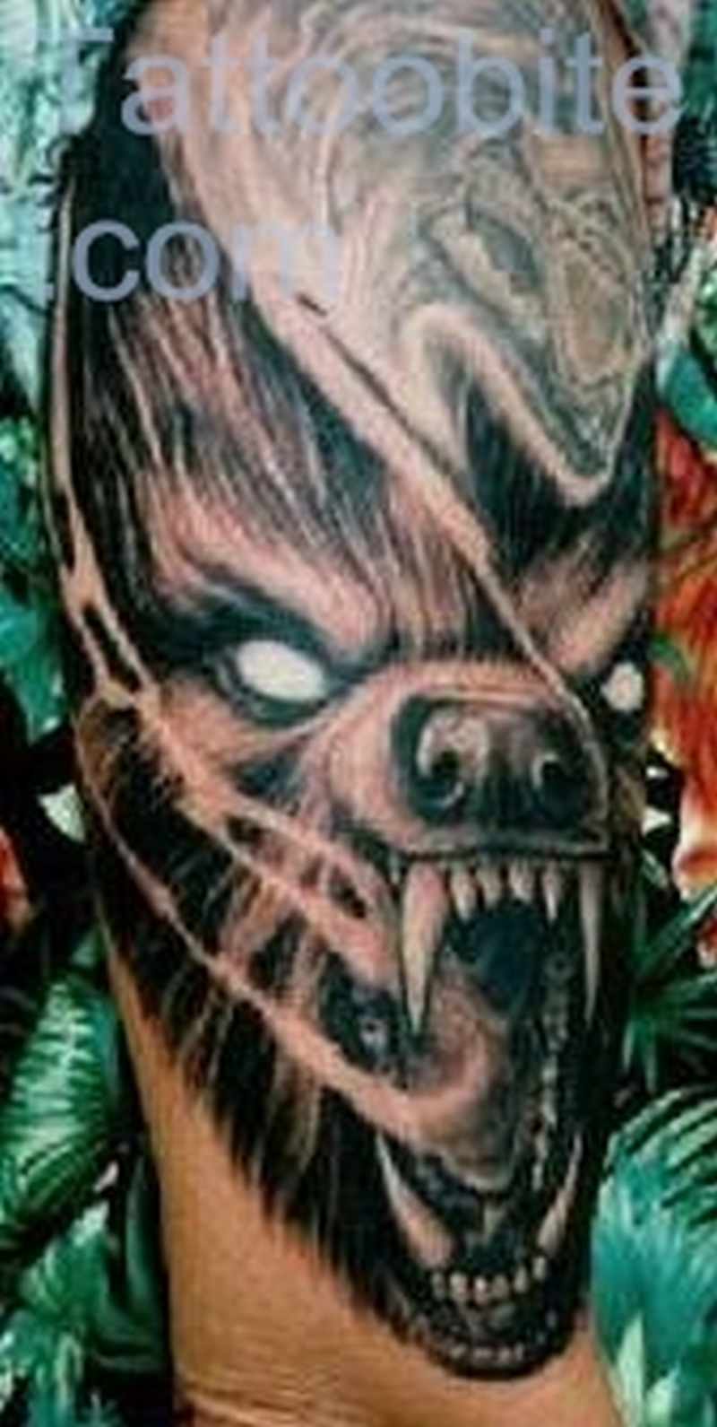 Deadly Wolf Tattoo