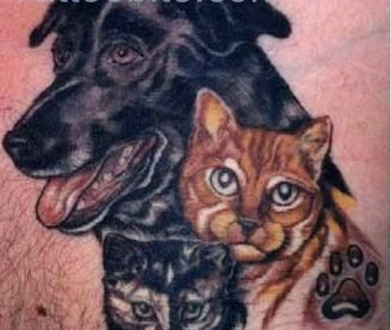 Dog And Cat Tattoo Design