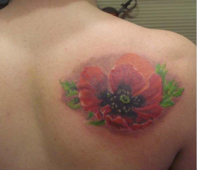 Poppy Flower Tattoos Designsk