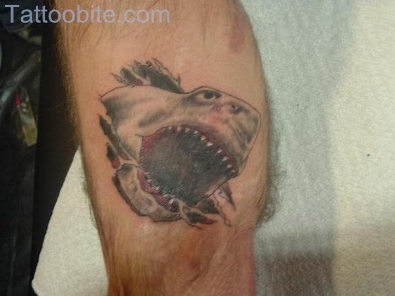 Shark Tattoo On Knee