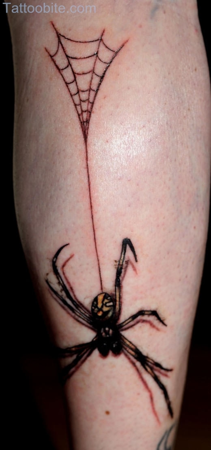 Spider Hanging Tattoo On Leg