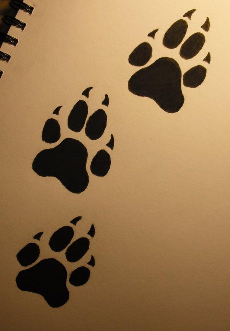 Wolf Paw Print Tattoos1