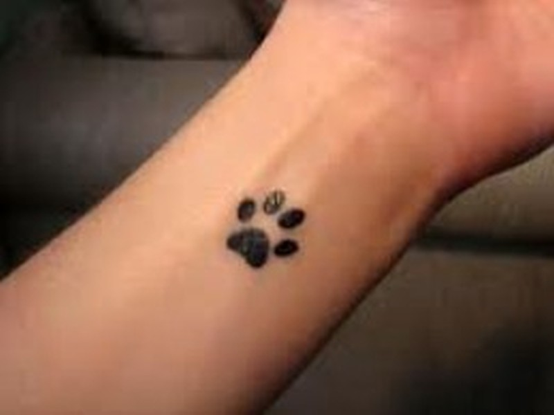 fbb0fc828 A cat paw print tattoo on wrist - Tattoos Book - 65.000 Tattoos Designs
