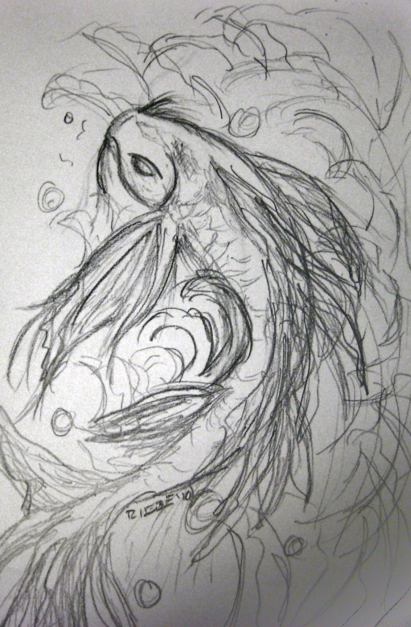 A koi fish sketch tattoo tattoos book tattoos for Koi fish sketch