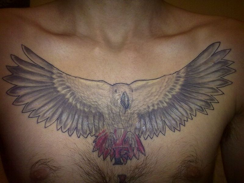 African grey bird tattoo on chest