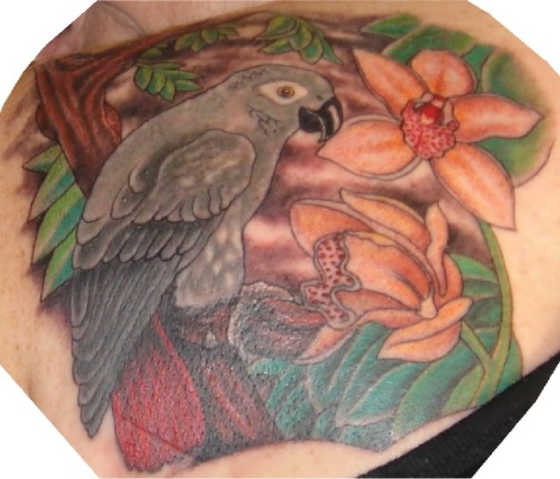 010b9310a4bd0 African grey parrot with orchards tattoo - Tattoos Book - 65.000 ...