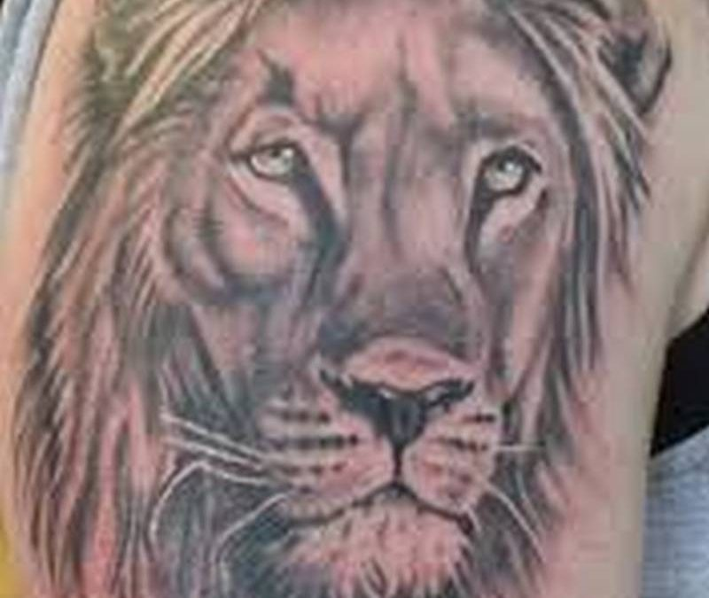 African lion face tattoo on arm