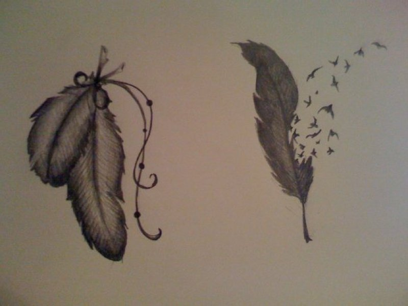 Amazing feather tattoo designs