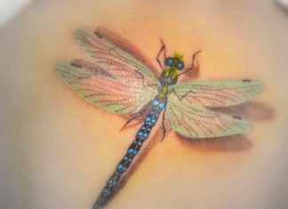 another-3d-dragonfly-tattoo-design