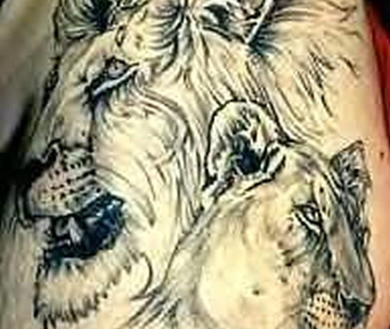 Awesome african lion tattoo