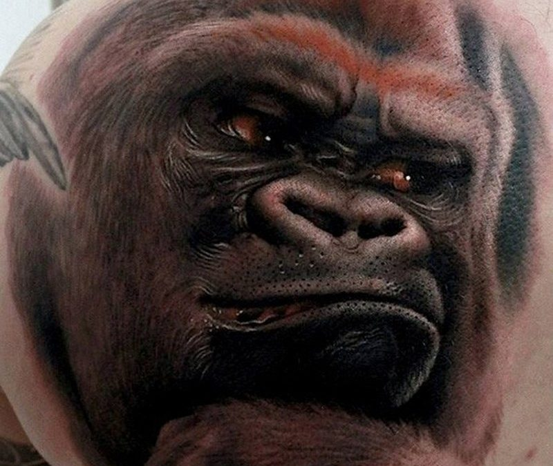Awesome realistic gorilla animal tattoo on back