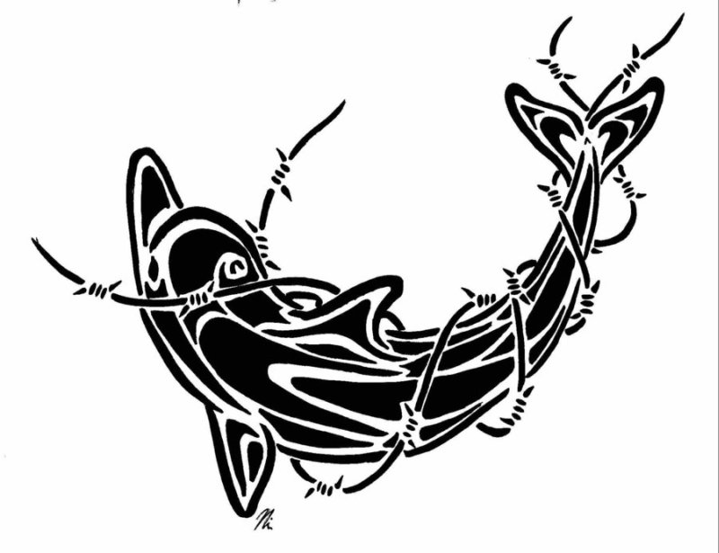 Barbed wire dolphin tattoo design