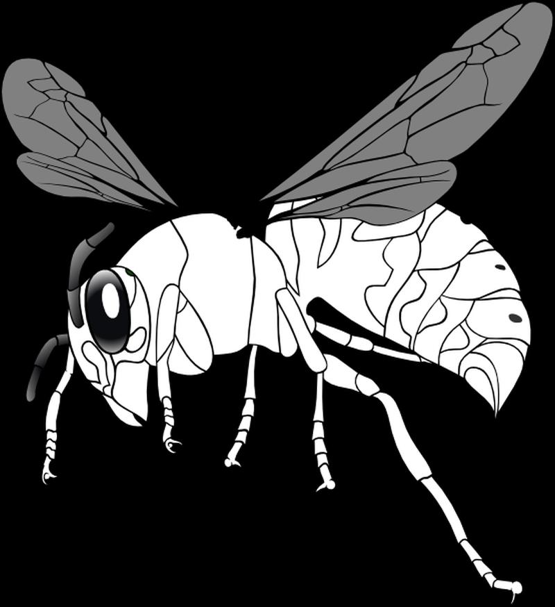 Bee line art tattoo design