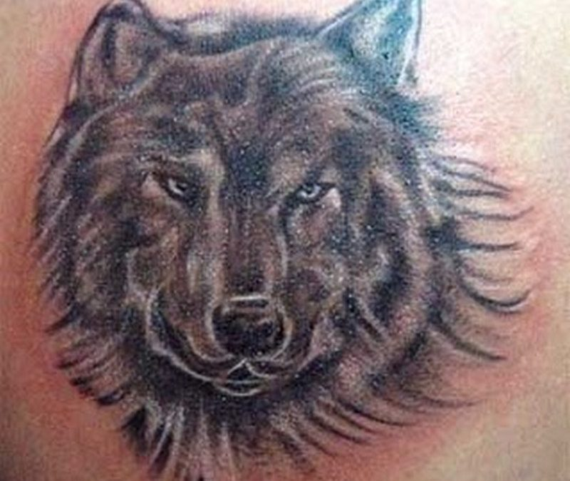 Best wolf tattoo