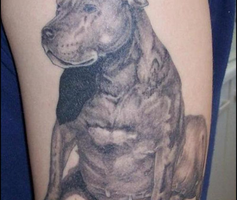 Big dog tattoo design on muscles