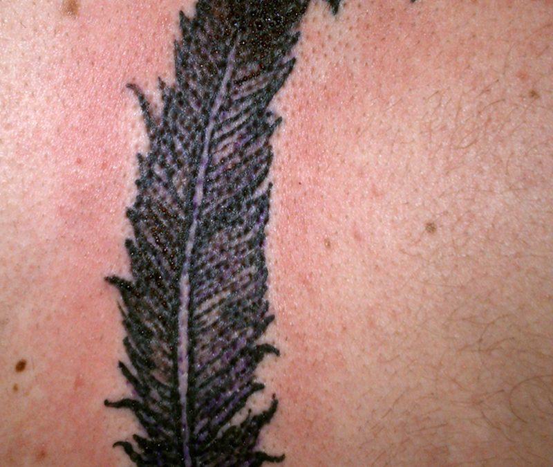 Big feather birds tattoo design