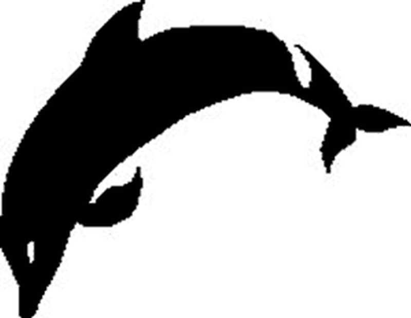 Black dolphin tattoo