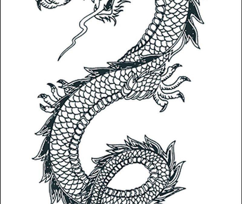 Black n white dragon tattoo design