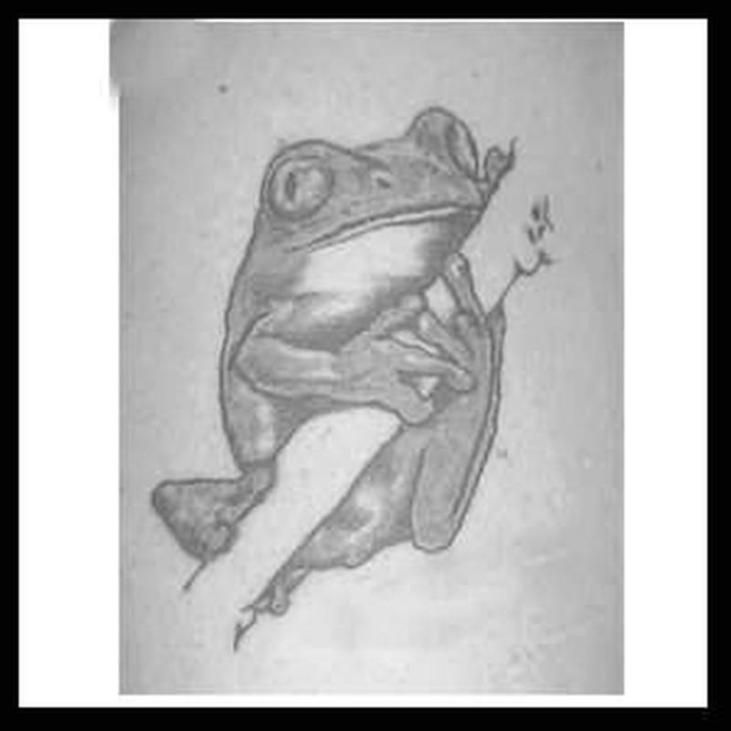 Black nd white frog tattoo
