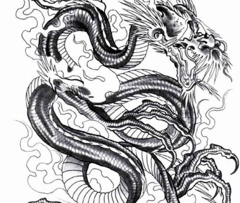 Brilliant dragon tattoo design