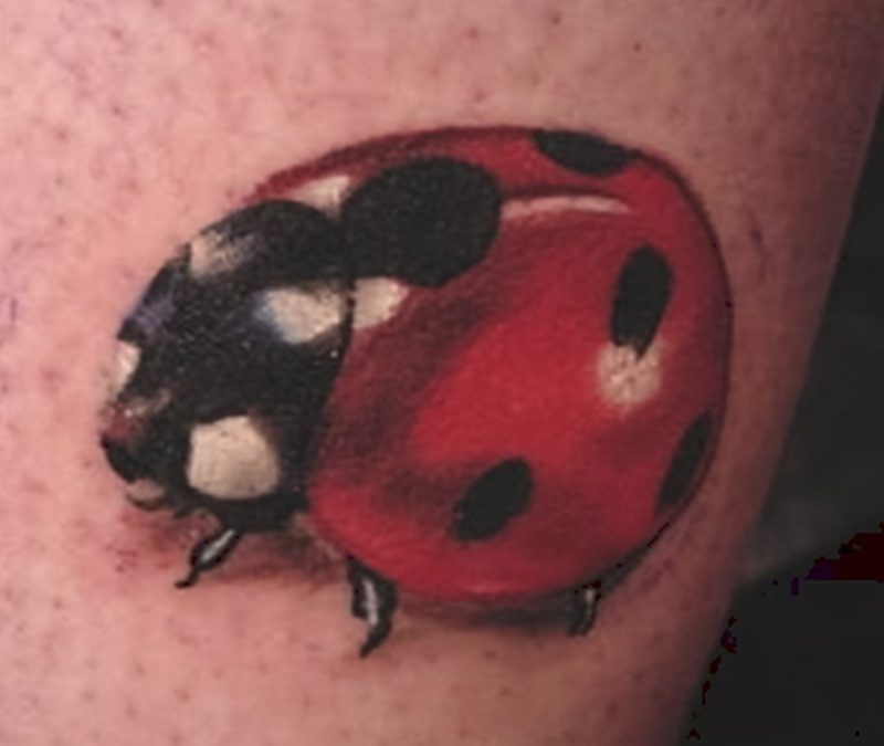 Brilliant lady bug tattoo