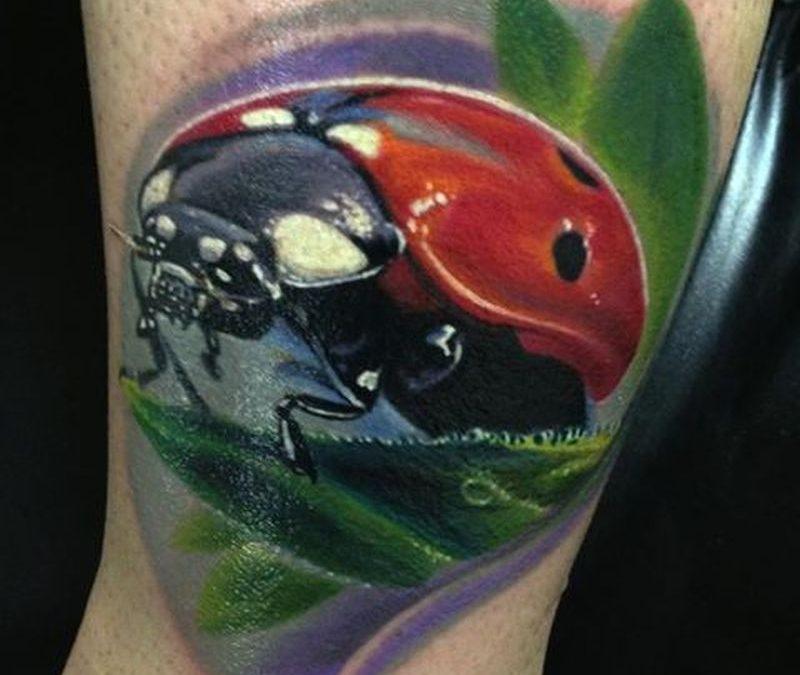 Brilliant lady bug tattoo design