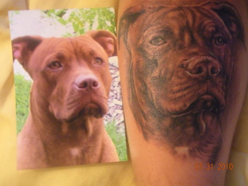 Brown dog portrait tattoo