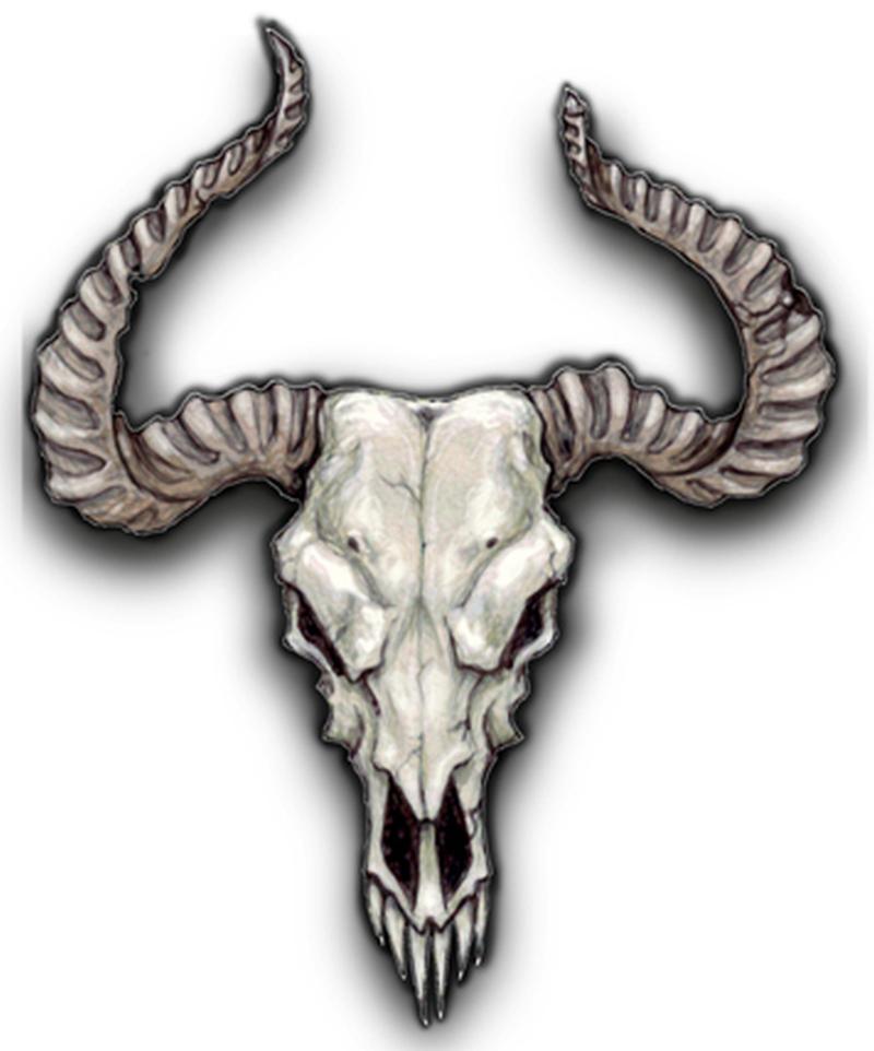 Bulls skull tattoo sample