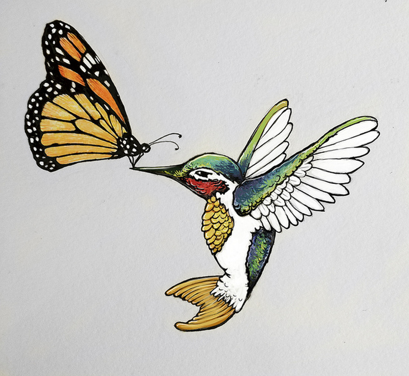 Butterfly n hummingbird tattoo designs