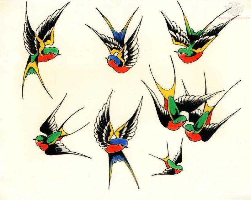Color swallows birds tattoo design