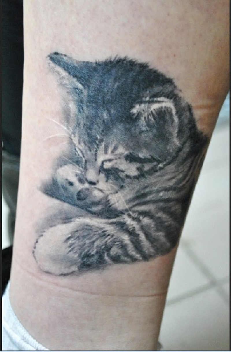 cute sleeping little kitten tattoo on leg tattoos book tattoos designs. Black Bedroom Furniture Sets. Home Design Ideas