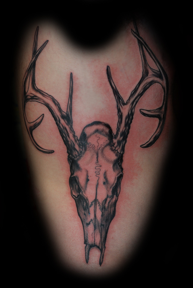Deer skull tattoo image