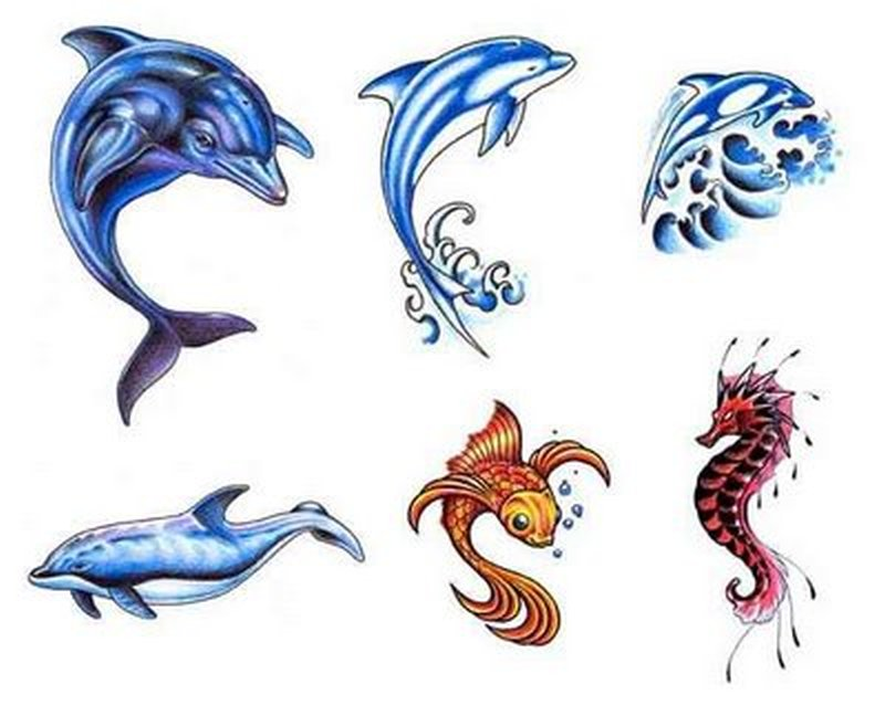 Dolphins fish n sea horse tattoo designs