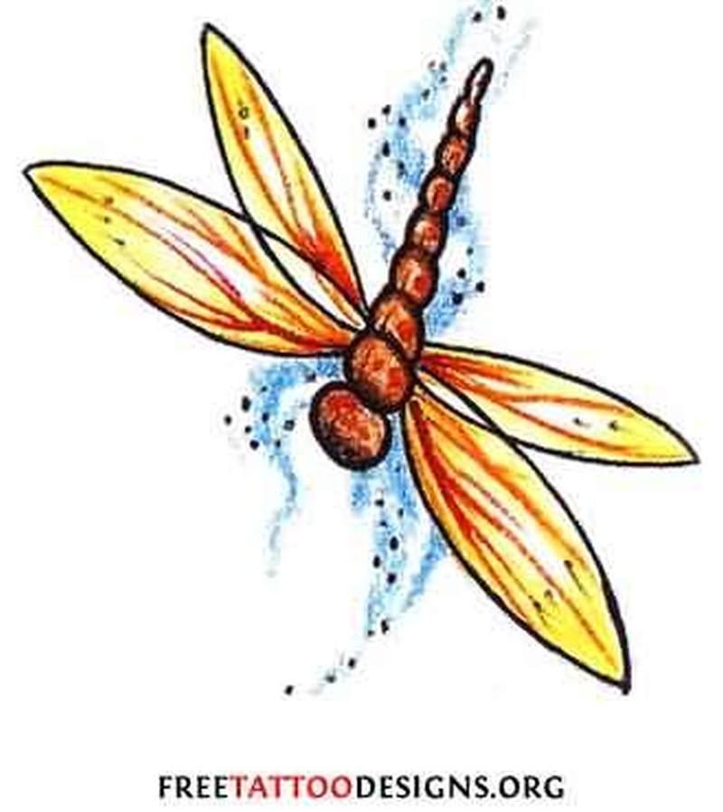 Dragonfly tattoo design sample