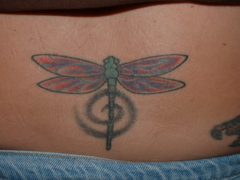 Dragonfly tattoo for lower waists