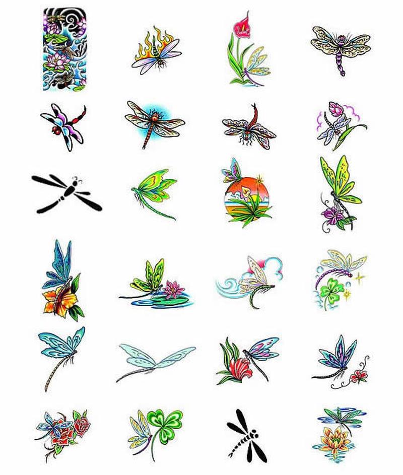 Dragonfly tattoo gallery