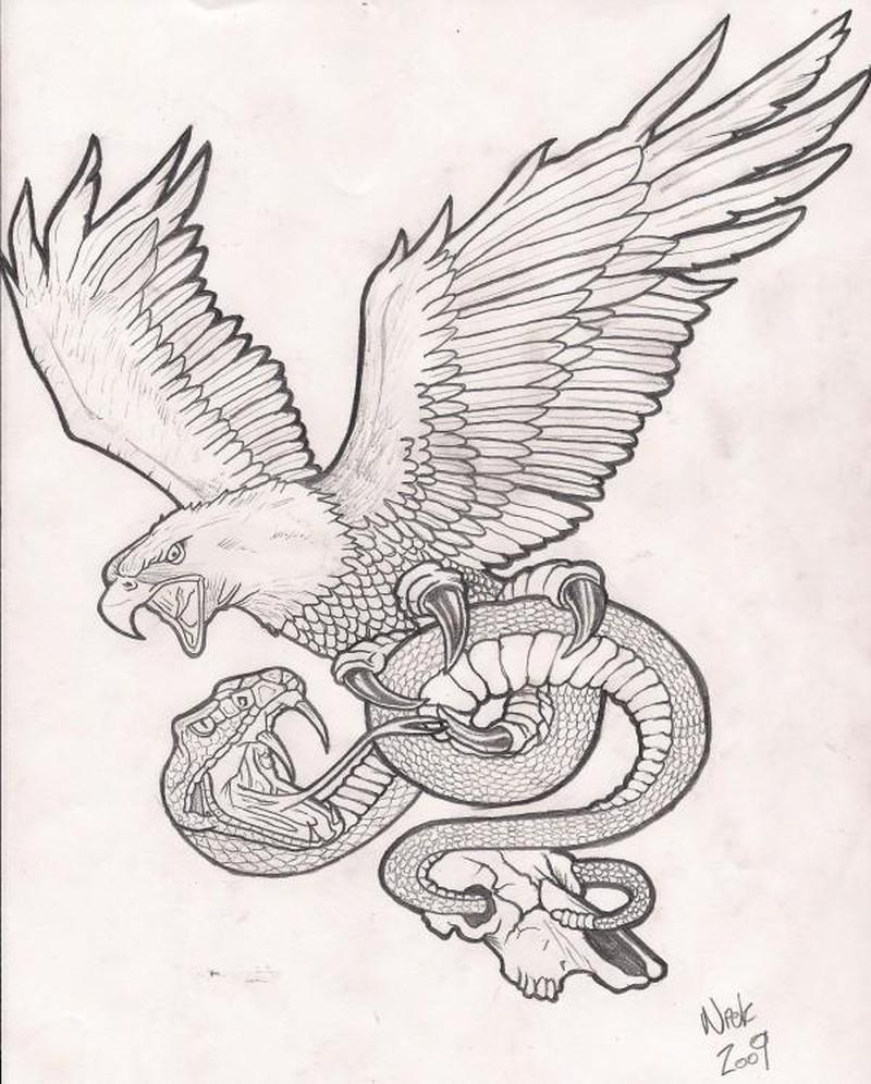 Line Drawing Snake : Eagle n snake tattoo drawing tattoos book
