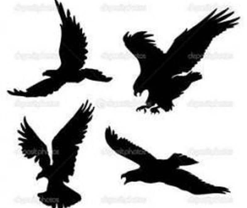 Eagle silhouette tattoo designs