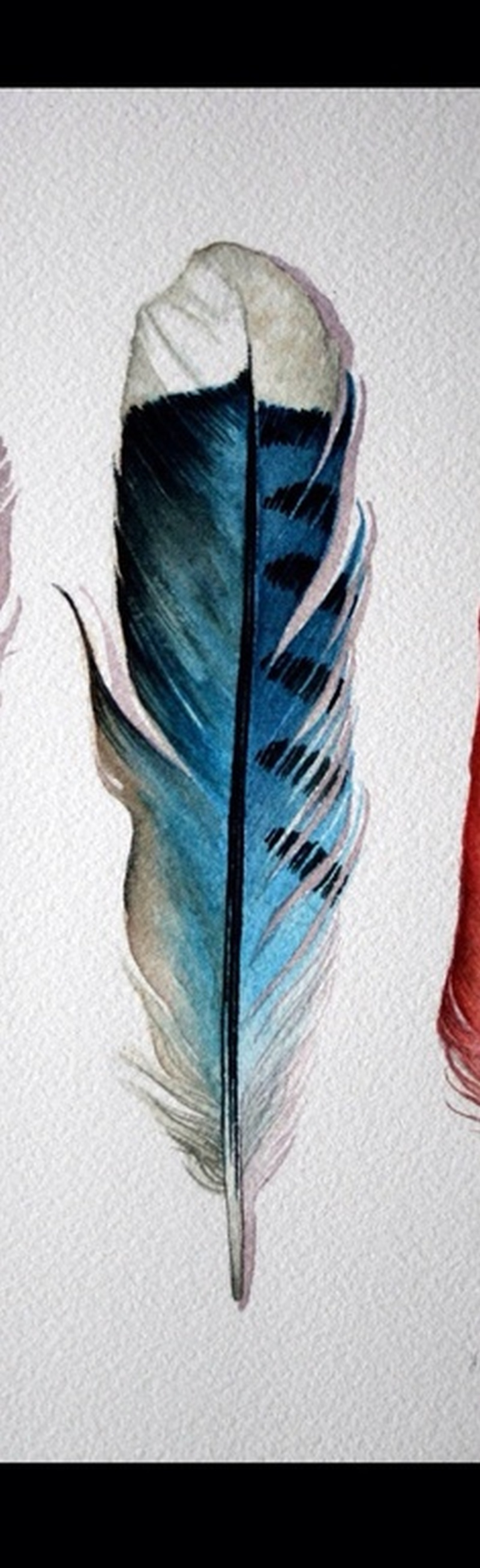 Elegant feather tattoo picture