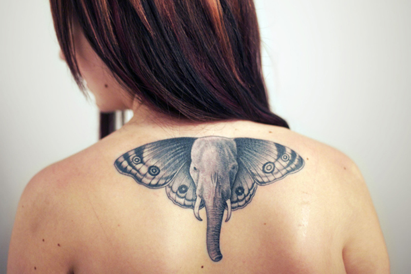 Elephant butterfly tattoo on upper back of girl