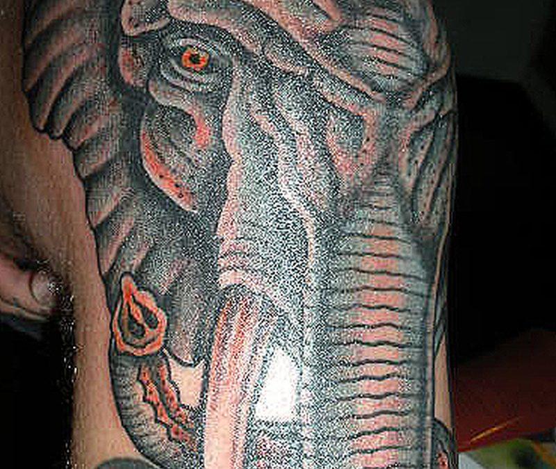 Elephant head tattoo on knee
